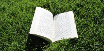 Lectures de l'été