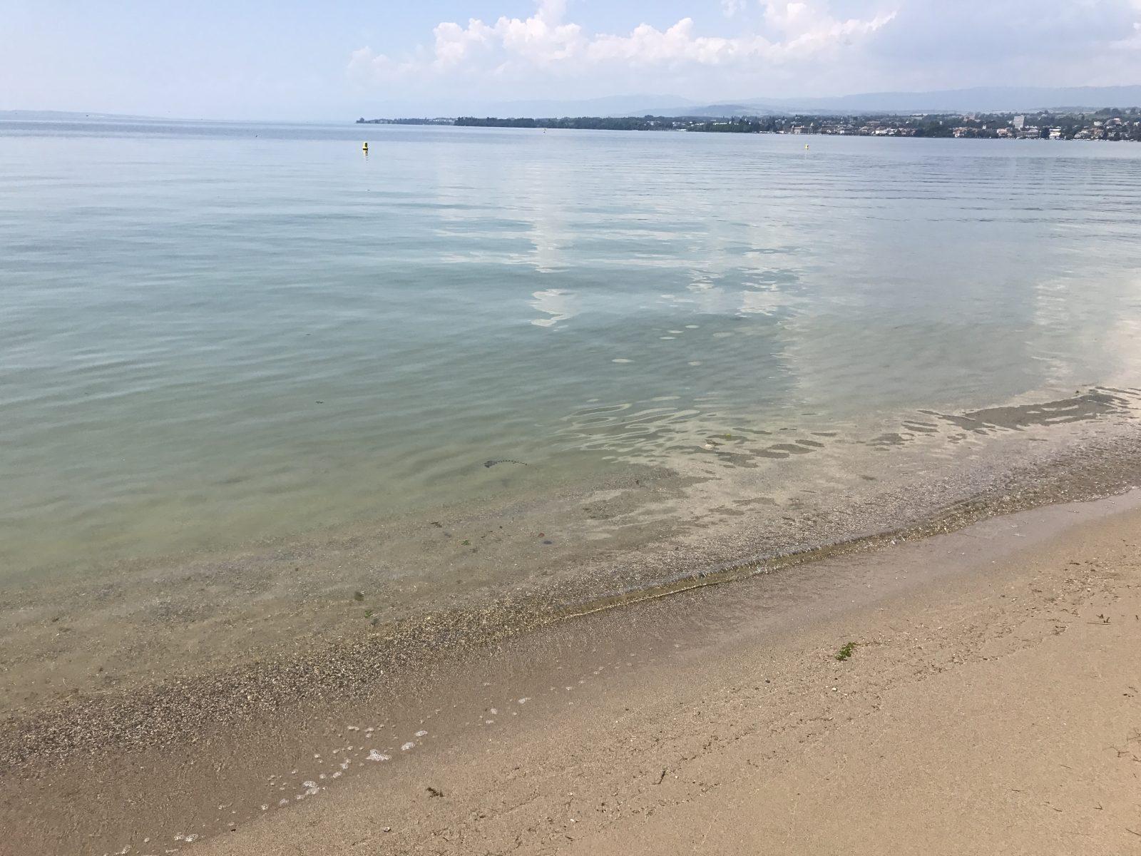 Parenthèse pour Soi – Vive l'été